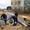Строительство трубопроводов: водопровода,  канализации,  полива.  #651771