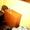 осуточно 2-ух к. кв. центр Николаева, на Советской (Макдональдс) WI-F - Изображение #3, Объявление #870707
