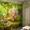 Фрески. Роспись стен в детских. Аэрография. Витражная роспись шкафов-купе.
