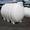 Емкости для транспортировки жидкостей Коблево Кривое Озеро #1699781