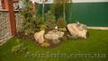 Ландшафтный дизайн, озеленение в Николаеве
