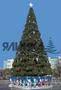 Новогодняя елка в Николаеве