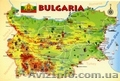 Болгарский язык  в Николаеве. Курсы болгарского языка в Николаеве. УЦ твой Успех