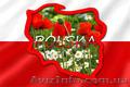 Польский язык  в Николаеве. Курсы польского языка в Николаеве. УЦ твой Успех