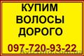 Волосы. Продажа волос в Николаеве. Скупка волос. Продать волосы дорого. Цена вол
